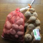 3月30日撮影。種芋買ってきました。キタアカリともう一つはなんだろか? こんな感じで10種類以上の種芋がホームセンターで売られていました。