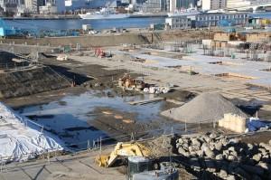 除染工事前と同様に水溜まりがある。坂巻幸雄氏は「水管理が不徹底。残った土壌の汚れが水で拡がる危険性もある」と指摘する=1月2日の豊洲。(撮影/永尾俊彦)
