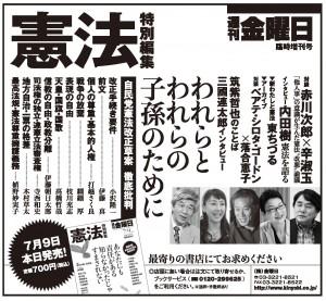 臨時増刊2013年7月9日号広告東京新聞7月9日